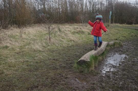 avoiding-the-mud